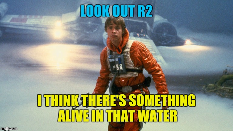 LOOK OUT R2 I THINK THERE'S SOMETHING ALIVE IN THAT WATER | made w/ Imgflip meme maker