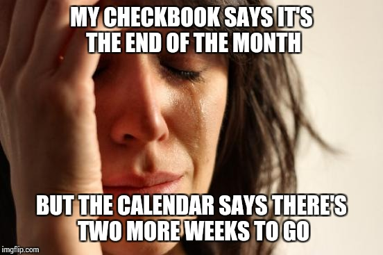 First World Problems Meme | MY CHECKBOOK SAYS IT'S THE END OF THE MONTH BUT THE CALENDAR SAYS THERE'S TWO MORE WEEKS TO GO | image tagged in memes,first world problems | made w/ Imgflip meme maker