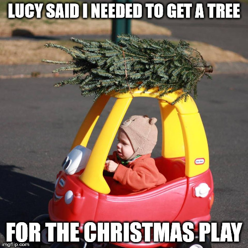 If they made the Peanuts Christmas Special today | LUCY SAID I NEEDED TO GET A TREE FOR THE CHRISTMAS PLAY | image tagged in christmas tree,tiny tykes car | made w/ Imgflip meme maker