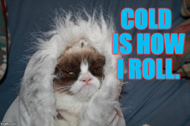 No, it's not cold in here.  It's just me. | COLD IS HOW I ROLL. | image tagged in memes,grumpy cat | made w/ Imgflip meme maker