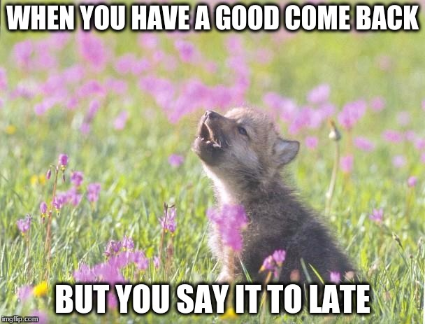 Baby Insanity Wolf | WHEN YOU HAVE A GOOD COME BACK BUT YOU SAY IT TO LATE | image tagged in memes,baby insanity wolf | made w/ Imgflip meme maker