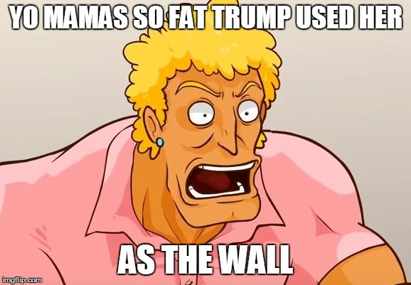 Yo Mama Shock | YO MAMAS SO FAT TRUMP USED HER AS THE WALL | image tagged in yo mama shock | made w/ Imgflip meme maker