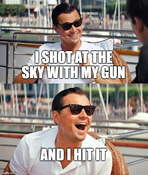 Leonardo Dicaprio Wolf Of Wall Street Meme |  I SHOT AT THE SKY WITH MY GUN; AND I HIT IT | image tagged in memes,leonardo dicaprio wolf of wall street | made w/ Imgflip meme maker