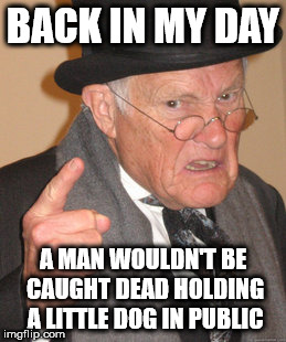 Back In My Day Meme | BACK IN MY DAY A MAN WOULDN'T BE CAUGHT DEAD HOLDING A LITTLE DOG IN PUBLIC | image tagged in memes,back in my day | made w/ Imgflip meme maker