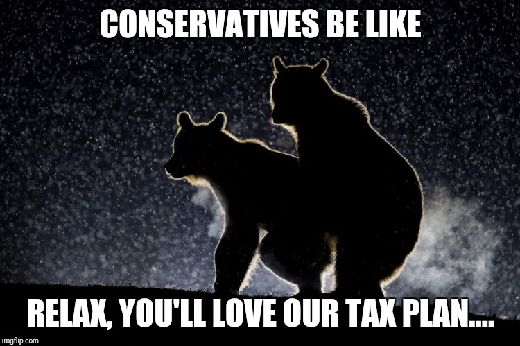 CONSERVATIVES BE LIKE RELAX, YOU'LL LOVE OUR TAX PLAN.... | image tagged in bear | made w/ Imgflip meme maker