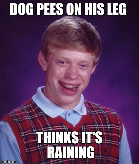 Bad Luck Brian Meme | DOG PEES ON HIS LEG THINKS IT'S  RAINING | image tagged in memes,bad luck brian | made w/ Imgflip meme maker