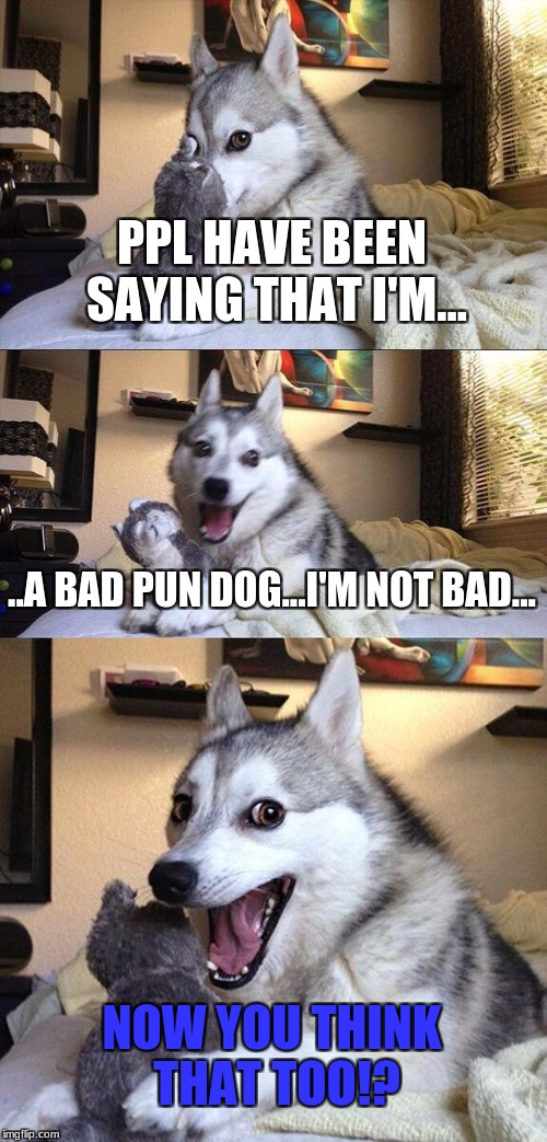 Bad Pun Dog Meme | PPL HAVE BEEN SAYING THAT I'M... ..A BAD PUN DOG...I'M NOT BAD... NOW YOU THINK THAT TOO!? | image tagged in memes,bad pun dog | made w/ Imgflip meme maker