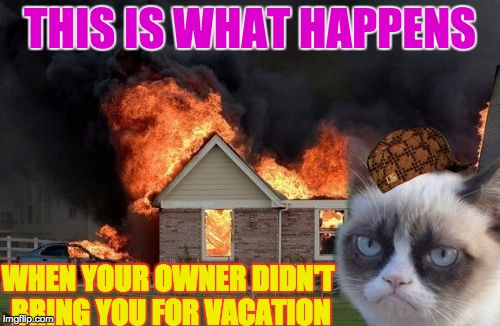Burn Kitty Meme | THIS IS WHAT HAPPENS WHEN YOUR OWNER DIDN'T BRING YOU FOR VACATION | image tagged in memes,burn kitty,grumpy cat,scumbag | made w/ Imgflip meme maker