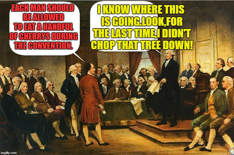 Constitutional Cocktail | EACH MAN SHOULD BE ALLOWED TO EAT A HANDFUL OF CHERRYS DURING THE CONVENTION. I KNOW WHERE THIS IS GOING.LOOK,FOR THE LAST TIME,I DIDN'T CHO | image tagged in funny memes,george washington | made w/ Imgflip meme maker