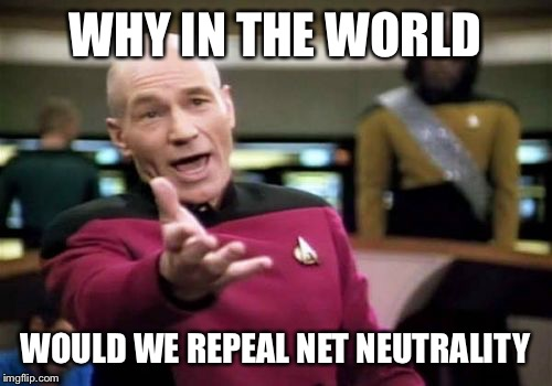Can't wait to pay $2.00 a Google search! Net neutrality month-a SilicaSandwhich event (December 2017) | WHY IN THE WORLD WOULD WE REPEAL NET NEUTRALITY | image tagged in memes,picard wtf | made w/ Imgflip meme maker