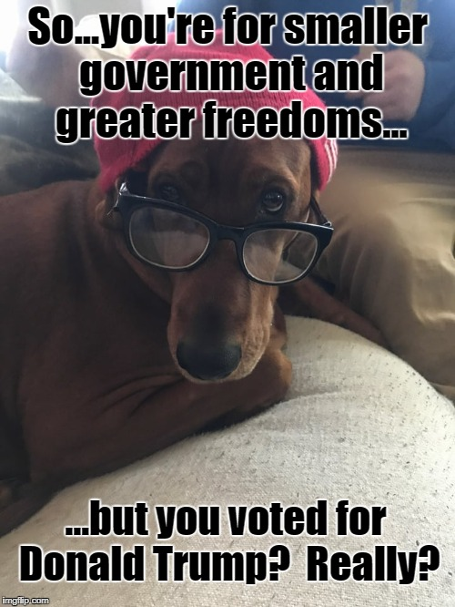 So...you're for smaller government and greater freedoms... ...but you voted for Donald Trump?  Really? | image tagged in smart dog,funny dogs,impeach trump,trump | made w/ Imgflip meme maker