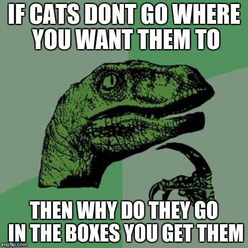 Philosoraptor Meme | IF CATS DONT GO WHERE YOU WANT THEM TO THEN WHY DO THEY GO IN THE BOXES YOU GET THEM | image tagged in memes,philosoraptor | made w/ Imgflip meme maker