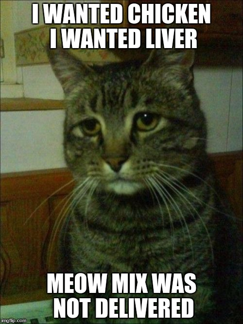 Depressed Cat |  I WANTED CHICKEN I WANTED LIVER; MEOW MIX WAS NOT DELIVERED | image tagged in memes,depressed cat | made w/ Imgflip meme maker
