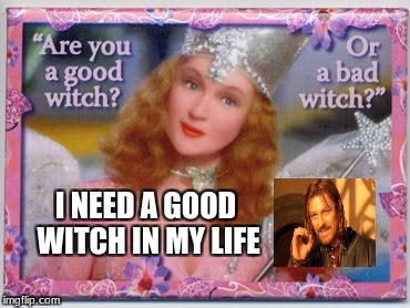 witches | I NEED A GOOD WITCH IN MY LIFE | image tagged in witch,magic | made w/ Imgflip meme maker