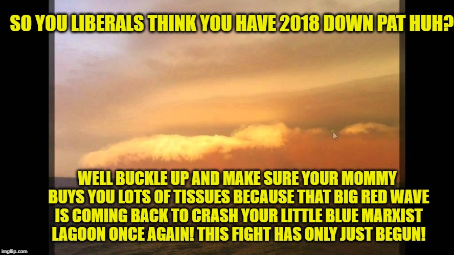 SO YOU LIBERALS THINK YOU HAVE 2018 DOWN PAT HUH? WELL BUCKLE UP AND MAKE SURE YOUR MOMMY BUYS YOU LOTS OF TISSUES BECAUSE THAT BIG RED WAVE | image tagged in memes,republicans,democrats,2018,retarded liberal protesters,alabama | made w/ Imgflip meme maker