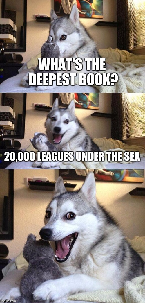 Bad Pun Dog Meme | WHAT'S THE DEEPEST BOOK? 20,000 LEAGUES UNDER THE SEA | image tagged in memes,bad pun dog | made w/ Imgflip meme maker