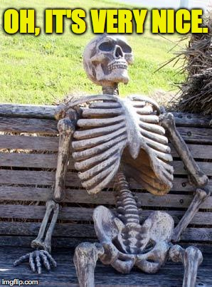 Waiting Skeleton Meme | OH, IT'S VERY NICE. | image tagged in memes,waiting skeleton | made w/ Imgflip meme maker