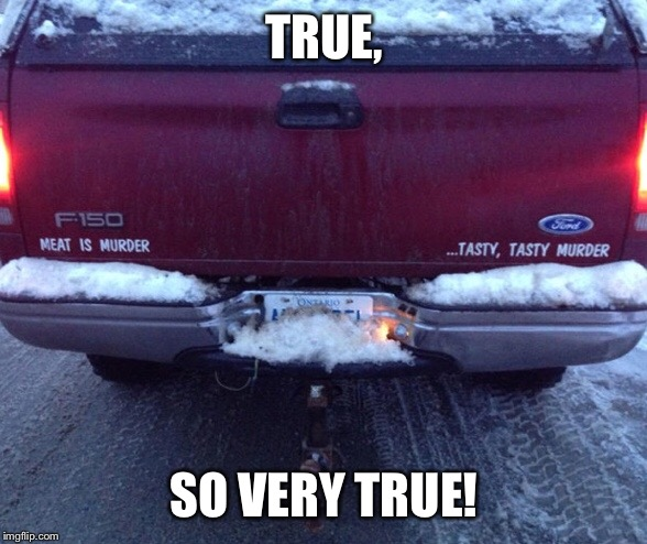 mmmmmm meaty | TRUE, SO VERY TRUE! | image tagged in meat,beef,murder,vegetarian,vegan,ford truck | made w/ Imgflip meme maker
