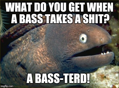 Bad Joke Eel Meme | WHAT DO YOU GET WHEN A BASS TAKES A SHIT? A BASS-TERD! | image tagged in memes,bad joke eel | made w/ Imgflip meme maker