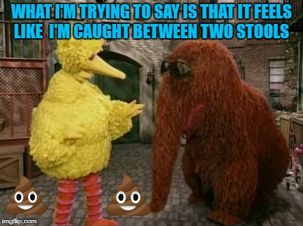 Snuffy Drops A Bomb Or Two | WHAT I'M TRYING TO SAY IS THAT IT FEELS LIKE I'M CAUGHT BETWEEN TWO STOOLS | image tagged in memes,big bird and snuffy | made w/ Imgflip meme maker