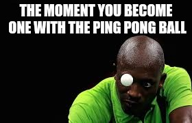 Become one with the Ping Pong | THE MOMENT YOU BECOME ONE WITH THE PING PONG BALL | image tagged in sports,ping pong,unity,memes | made w/ Imgflip meme maker