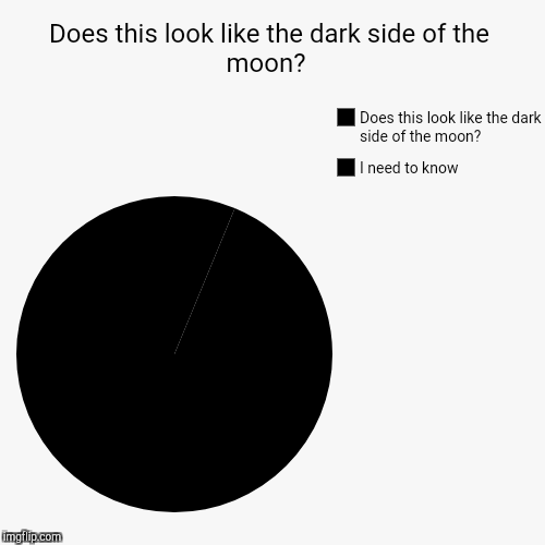 Does this look like the dark side of the moon?  | I need to know, Does this look like the dark side of the moon? | image tagged in funny,pie charts | made w/ Imgflip chart maker