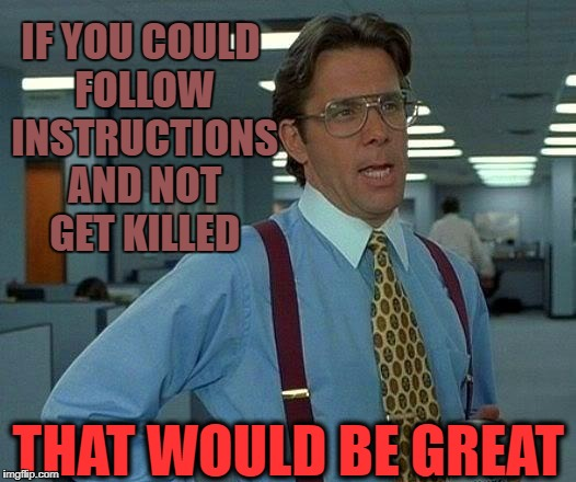 That Would Be Great Meme | IF YOU COULD FOLLOW INSTRUCTIONS AND NOT GET KILLED THAT WOULD BE GREAT | image tagged in memes,that would be great | made w/ Imgflip meme maker