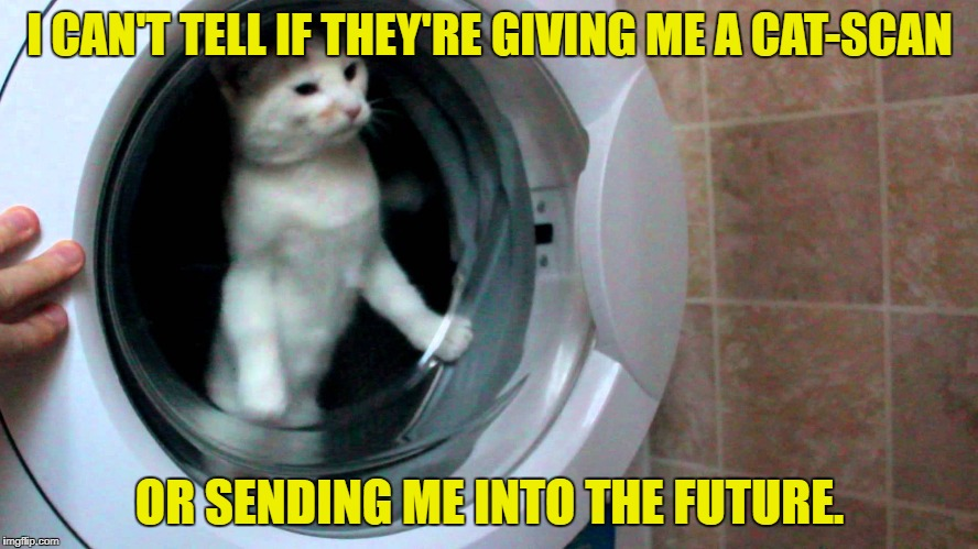 Boldly going somewhere | I CAN'T TELL IF THEY'RE GIVING ME A CAT-SCAN OR SENDING ME INTO THE FUTURE. | image tagged in meme,cat | made w/ Imgflip meme maker