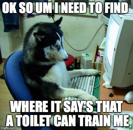 ah there it is | OK SO UM I NEED TO FIND WHERE IT SAY'S THAT A TOILET CAN TRAIN ME | image tagged in memes | made w/ Imgflip meme maker