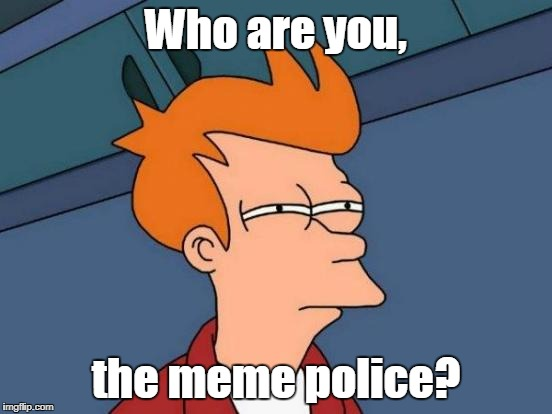 Futurama Fry Meme | Who are you, the meme police? | image tagged in memes,futurama fry | made w/ Imgflip meme maker