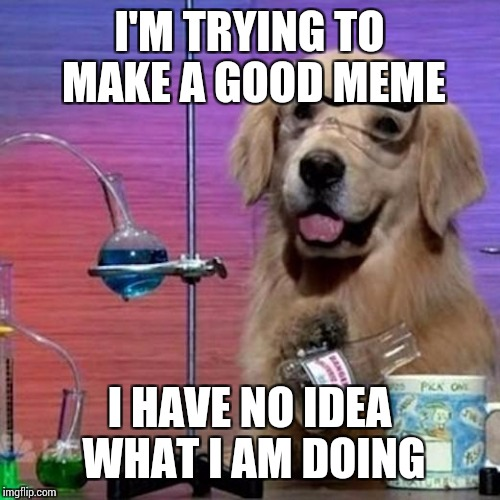 I Have No Idea What I Am Doing Dog Meme | I'M TRYING TO MAKE A GOOD MEME I HAVE NO IDEA WHAT I AM DOING | image tagged in memes,i have no idea what i am doing dog | made w/ Imgflip meme maker