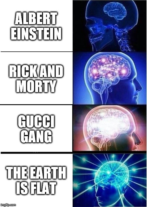 Expanding Brain Meme | ALBERT EINSTEIN RICK AND MORTY GUCCI GANG THE EARTH IS FLAT | image tagged in memes,expanding brain | made w/ Imgflip meme maker