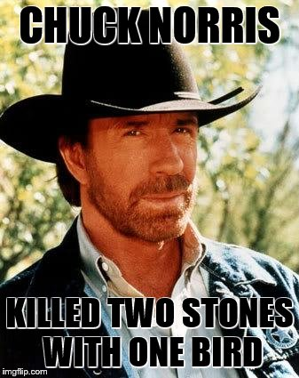 CHUCK NORRIS KILLED TWO STONES WITH ONE BIRD | made w/ Imgflip meme maker