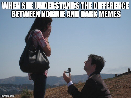 Marriage proposal | WHEN SHE UNDERSTANDS THE DIFFERENCE BETWEEN NORMIE AND DARK MEMES | image tagged in marriage proposal | made w/ Imgflip meme maker