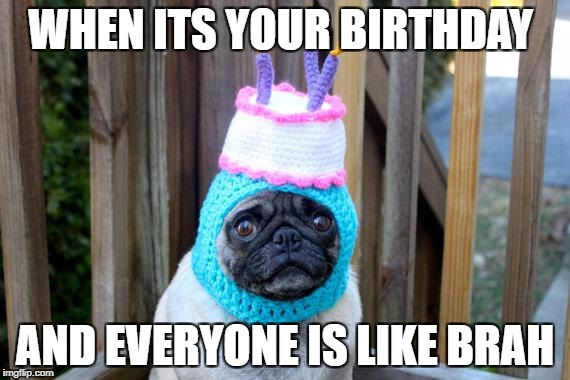 birthday pug | WHEN ITS YOUR BIRTHDAY AND EVERYONE IS LIKE BRAH | image tagged in birthday pug | made w/ Imgflip meme maker
