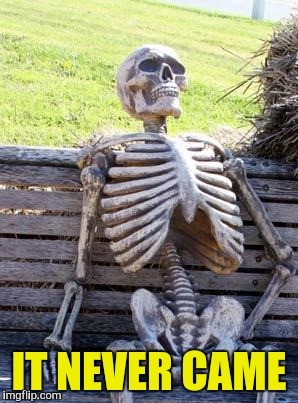 Waiting Skeleton Meme | IT NEVER CAME | image tagged in memes,waiting skeleton | made w/ Imgflip meme maker