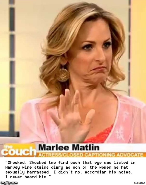 Marlee Matlin Harvey Weinstein | image tagged in ccfsdca,marlee matlin,harvey,harvey weinstein,sexual,sexual harrassment | made w/ Imgflip meme maker