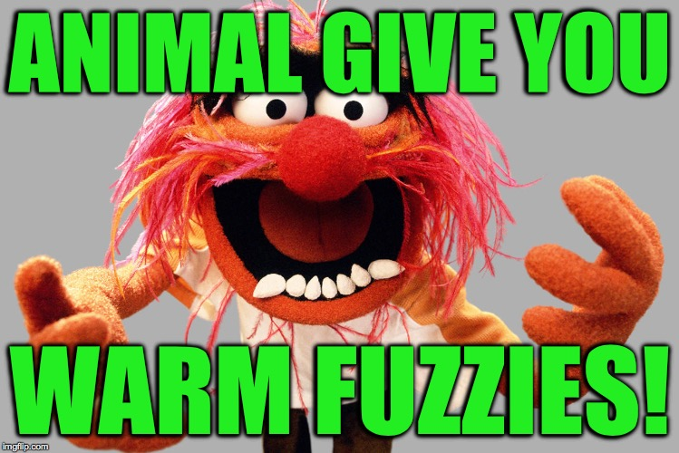 ANIMAL GIVE YOU WARM FUZZIES! | made w/ Imgflip meme maker