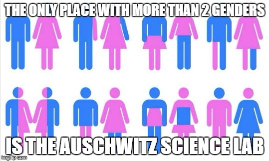 du naht hait plez! | THE ONLY PLACE WITH MORE THAN 2 GENDERS IS THE AUSCHWITZ SCIENCE LAB | image tagged in gender chart 58 genders,gender identity,politics,nazis | made w/ Imgflip meme maker