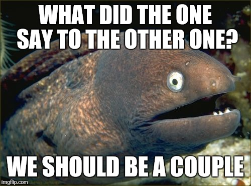 Bad Joke Eel Meme | WHAT DID THE ONE SAY TO THE OTHER ONE? WE SHOULD BE A COUPLE | image tagged in memes,bad joke eel | made w/ Imgflip meme maker