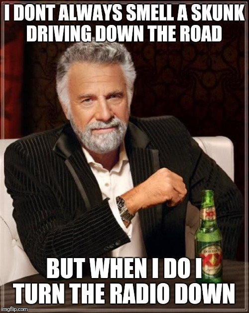 The Most Interesting Man In The World Meme | I DONT ALWAYS SMELL A SKUNK DRIVING DOWN THE ROAD BUT WHEN I DO I TURN THE RADIO DOWN | image tagged in memes,the most interesting man in the world | made w/ Imgflip meme maker