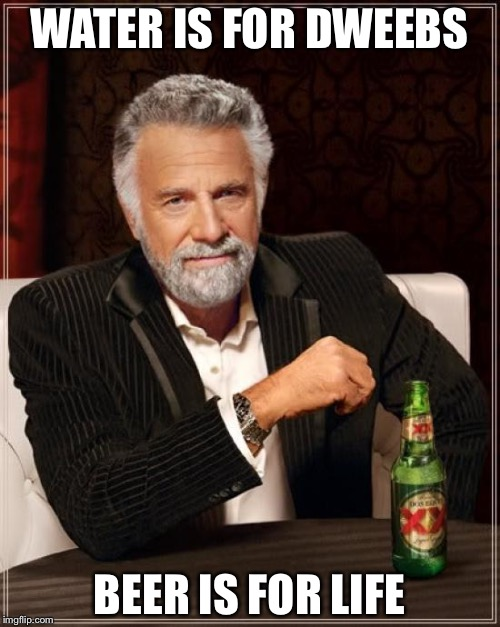 The Most Interesting Man In The World Meme | WATER IS FOR DWEEBS BEER IS FOR LIFE | image tagged in memes,the most interesting man in the world | made w/ Imgflip meme maker