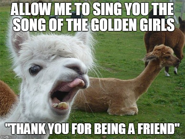 "Alpaca lips | ALLOW ME TO SING YOU THE SONG OF THE GOLDEN GIRLS ""THANK YOU FOR BEING A FRIEND"" 