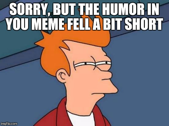 Futurama Fry Meme | SORRY, BUT THE HUMOR IN YOU MEME FELL A BIT SHORT | image tagged in memes,futurama fry | made w/ Imgflip meme maker