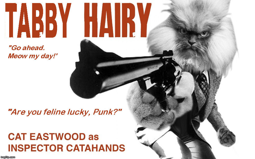"Fighting crime on the streets of Cat Fransico | ""GO AHEAD, MEOW MY DAY!"" ""ARE YOU FELINE LUCKY, PUNK?"" 