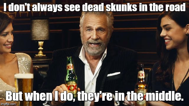 The Most Interesting Man in the World | I don't always see dead skunks in the road But when I do, they're in the middle. | image tagged in memes,the most interesting man in the world,music,song lyrics | made w/ Imgflip meme maker