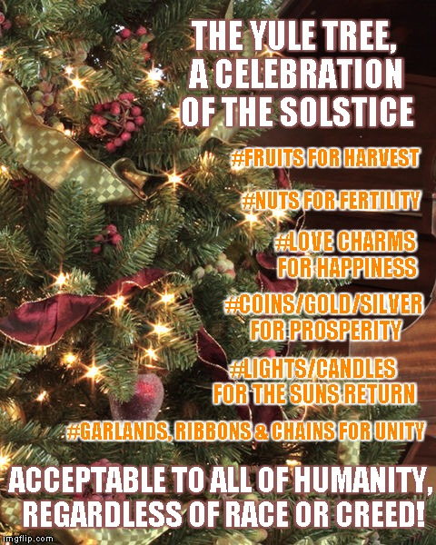 Yule Tree | THE YULE TREE, A CELEBRATION OF THE SOLSTICE ACCEPTABLE TO ALL OF HUMANITY, REGARDLESS OF RACE OR CREED! #COINS/GOLD/SILVER FOR PROSPERITY # | image tagged in celebration,nuts,love,light,unity,solstice | made w/ Imgflip meme maker