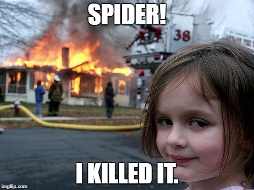 Disaster Girl Meme | SPIDER! I KILLED IT. | image tagged in memes,disaster girl | made w/ Imgflip meme maker