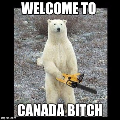Chainsaw Bear Meme | WELCOME TO CANADA B**CH | image tagged in memes,chainsaw bear | made w/ Imgflip meme maker
