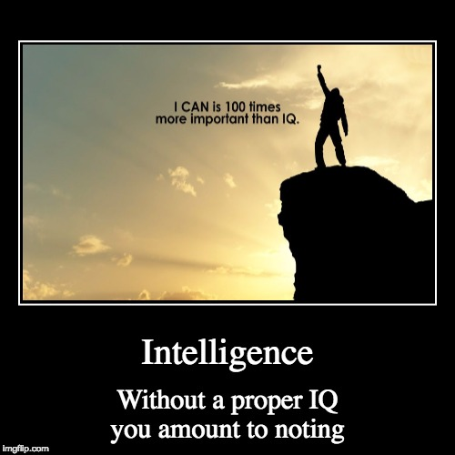 Intelligence | Without a proper IQ you amount to noting | image tagged in funny,demotivationals | made w/ Imgflip demotivational maker